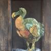 Houtenpaneel – dodo