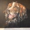 Houtenpaneel – hond