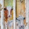 Houten paneel – koeien